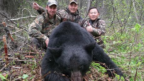 4-OL_BC_blackbear23b