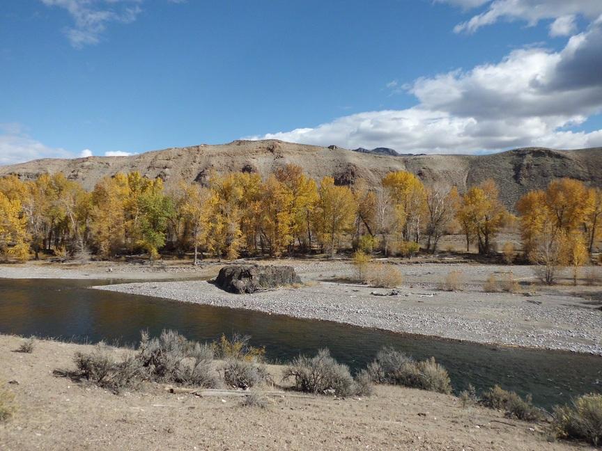 Idaho_Salmon_River_3