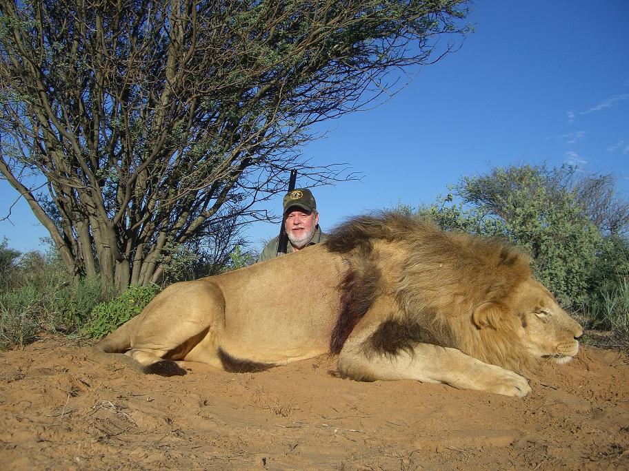Mark_Lion1