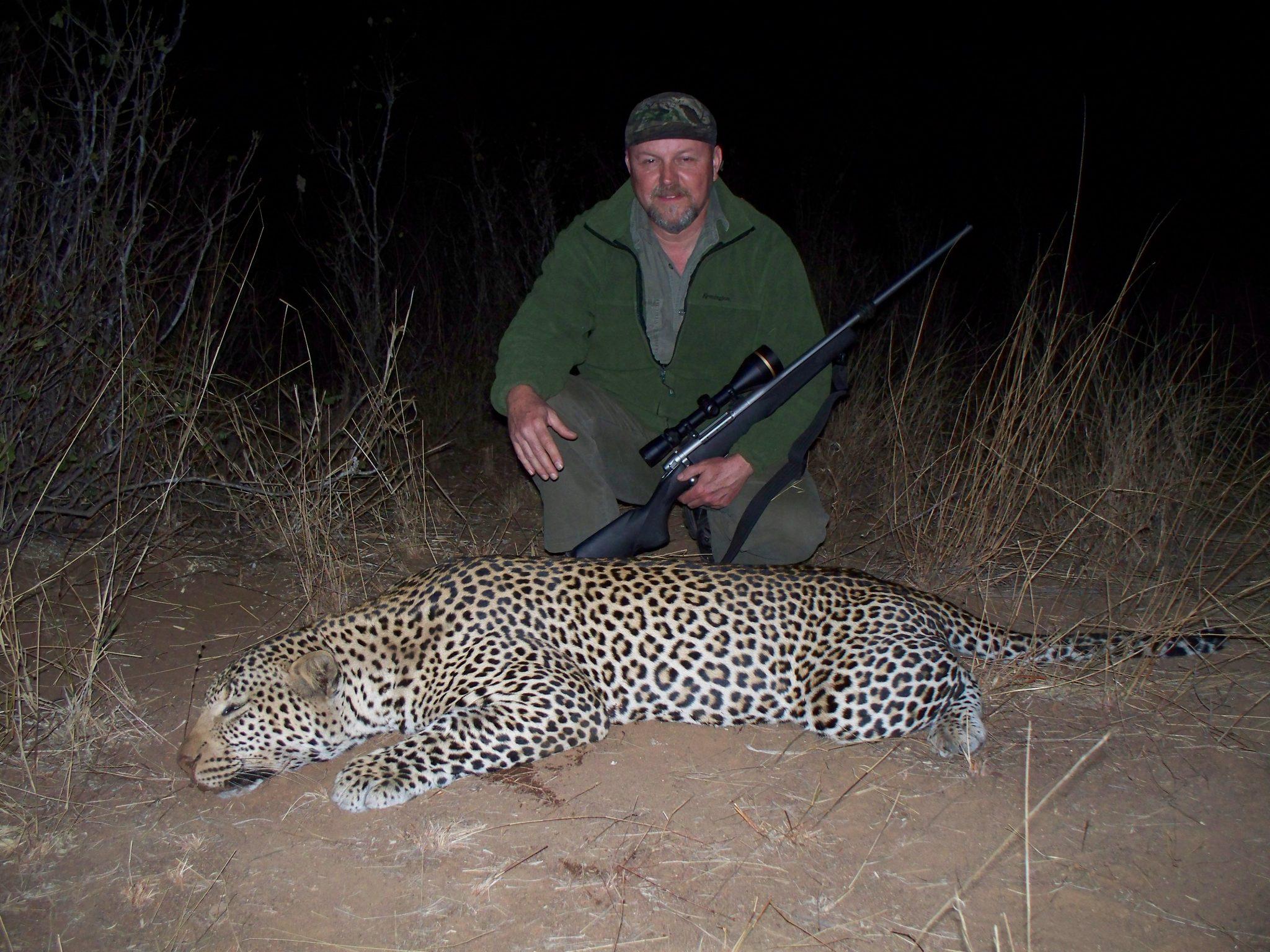 Zim.leopard2