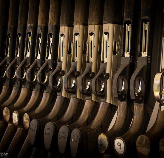 santa_rita_duck_guns