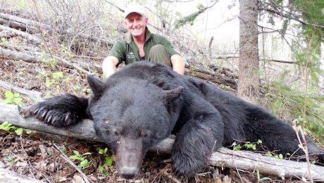 1-OL_BC_black_bear_1