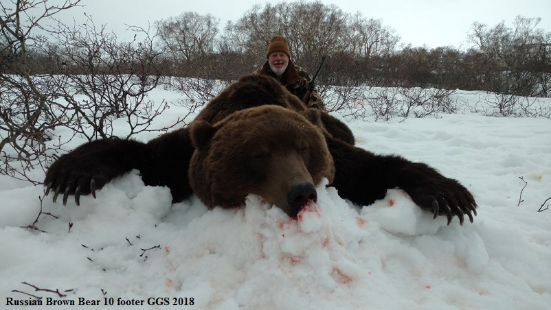 Mark_Russia_Bear_1