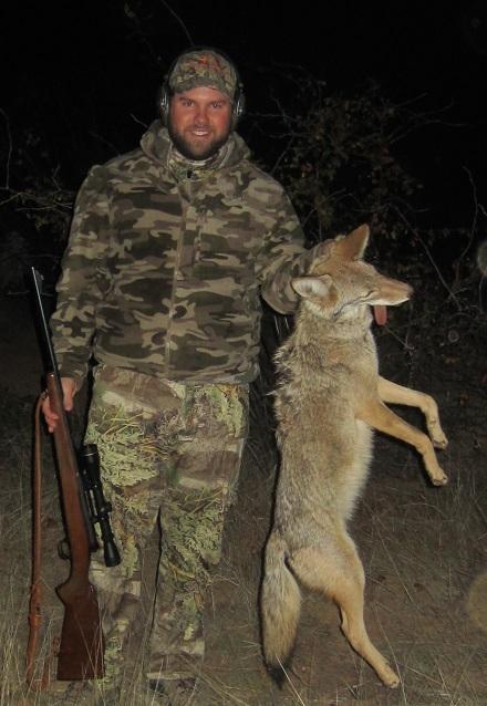 Mexico_Coyote